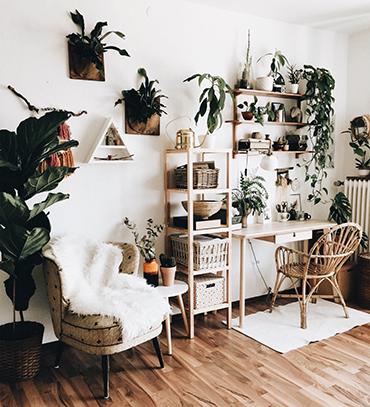 természetes otthonok - zöldülj by Friederikchen