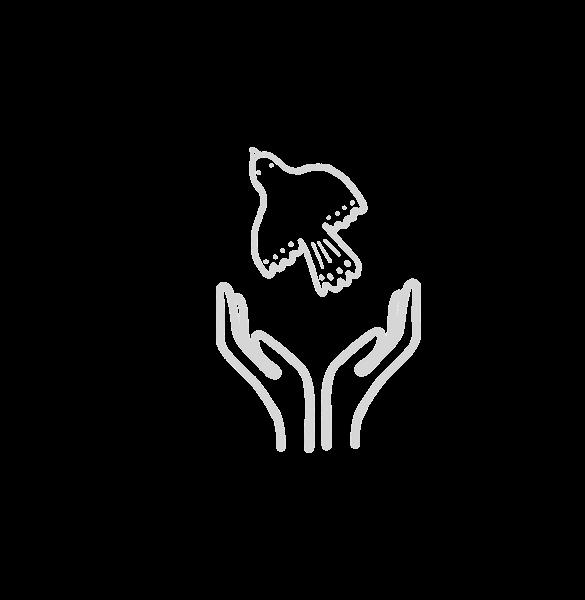 Etikus márka logó