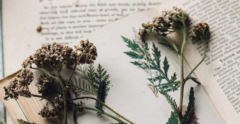 virágvizek a natúrkozmetikumok királynője